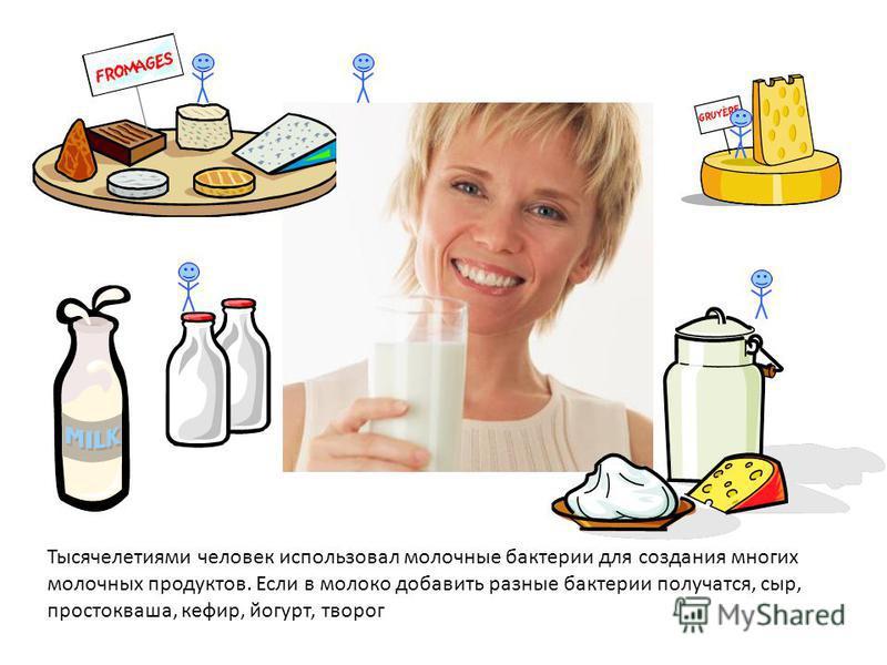 В нашем желудке есть множество кишечных бактерий. Но не бойся, они не страшные, наоборот, они помогают тебе справиться с пищей: переваривают ее. Кишечные бактерии