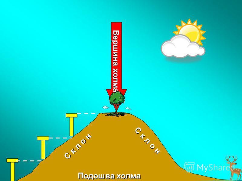 Подошва холма С к л о н С к л о н Вершина холма