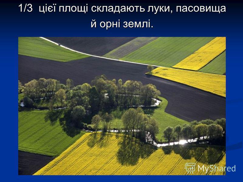 1/3 цієї площі складають луки, пасовища й орні землі.