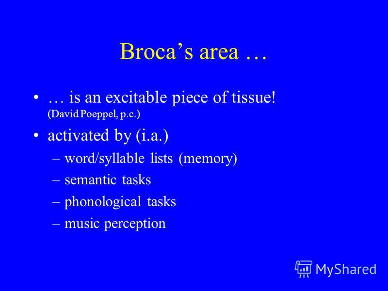 Brocas area … … is an excitable piece of tissue! (David Poeppel, p.c.) activated by (i.a.) –word/syllable lists (memory) –semantic tasks –phonological tasks –music perception