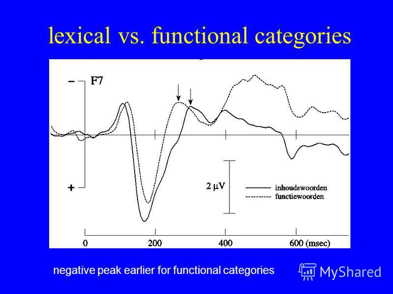 lexical vs. functional categories negative peak earlier for functional categories