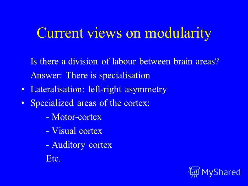 Current views on modularity Is there a division of labour between brain areas? Answer: There is specialisation Lateralisation: left-right asymmetry Specialized areas of the cortex: - Motor-cortex - Visual cortex - Auditory cortex Etc.