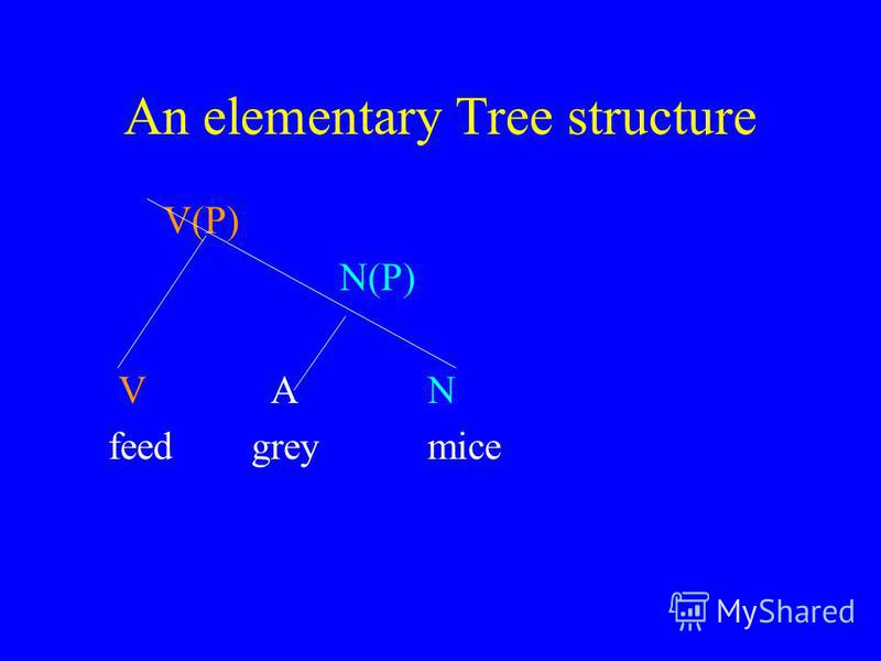 An elementary Tree structure V(P) N(P) V AN feed grey mice