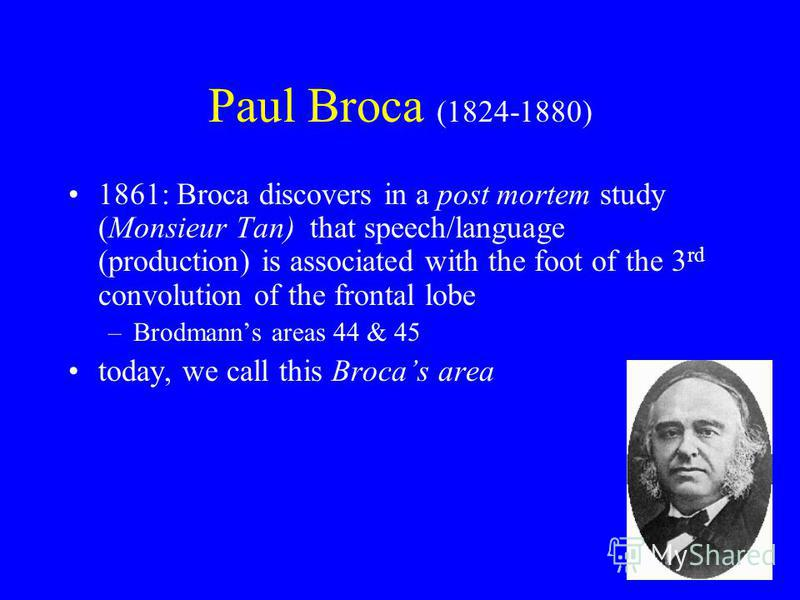 Paul Broca (1824-1880) 1861: Broca discovers in a post mortem study (Monsieur Tan) that speech/language (production) is associated with the foot of the 3 rd convolution of the frontal lobe –Brodmanns areas 44 & 45 today, we call this Brocas area