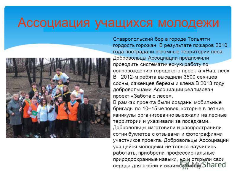Ассоциация учащихся молодежи Ставропольский бор в городе Тольятти гордость горожан. В результате пожаров 2010 года пострадали огромные территории леса. Добровольцы Ассоциации предложили проводить систематическую работу по сопровождению городского про