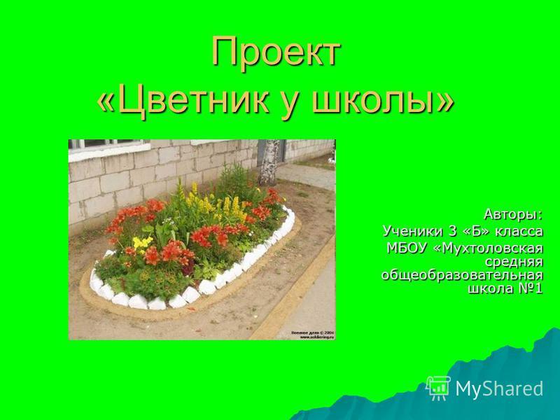 Проект «Цветник у школы» Авторы: Ученики 3 «Б» класса МБОУ «Мухтоловская средняя общеобразовательная школа 1