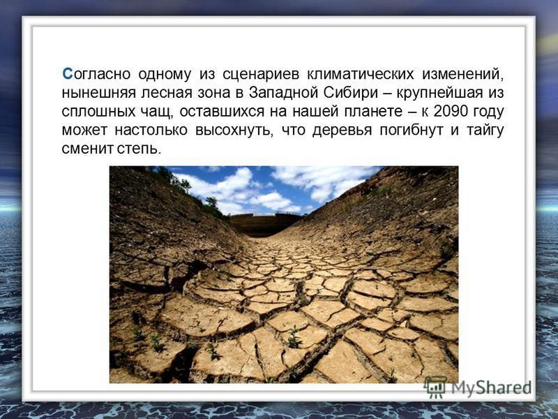 Согласно одному из сценариев климатических изменений, нынешняя лесная зона в Западной Сибири – крупнейшая из сплошных чащ, оставшихся на нашей планете – к 2090 году может настолько высохнуть, что деревья погибнут и тайгу сменит степь.
