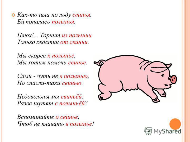 Как-то шла по льду свинья. Ей попалась полынья. Плюх!... Торчит из полыньи Только хвостик от свиньи. Мы скорее к полынье, Мы хотим помочь свинье. Сами - чуть не в полынью, Но спасли-таки свинью. Недовольны мы свиньёй: Разве шутят с полыньёй? Вспомина