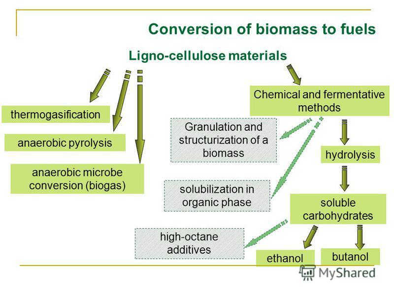 Conversion of biomass to fuels Ligno-cellulose materials thermogasification anaerobic pyrolysis anaerobic microbe conversion (biogas) Chemical and fermentative methods hydrolysis soluble carbohydrates ethanol butanol high-octane additives solubilizat