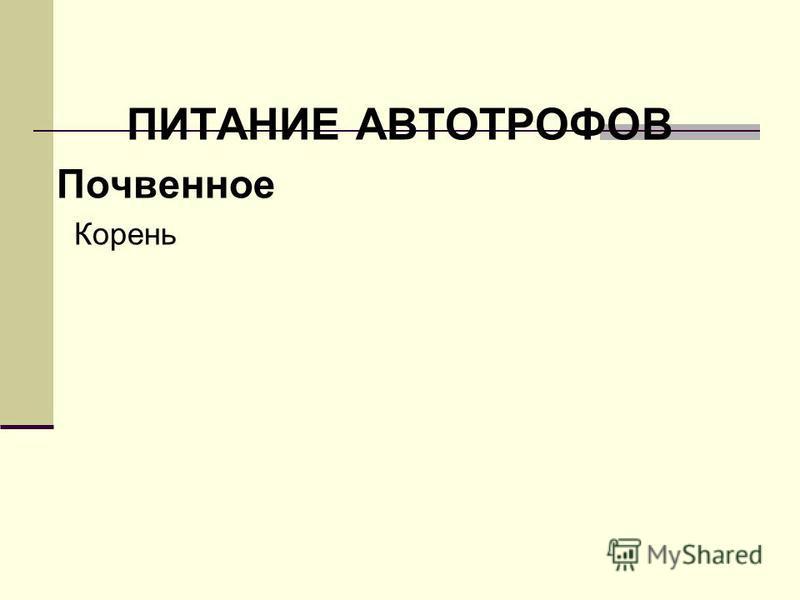 ПИТАНИЕ АВТОТРОФОВ Почвенное Корень