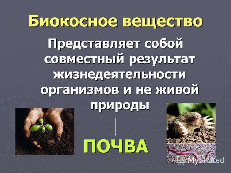 Биокосное вещество Представляет собой совместный результат жизнедеятельности организмов и не живой природы ПОЧВА