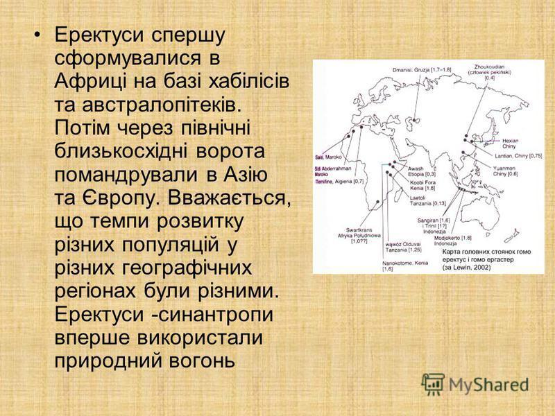 Еректуси спершу сформувалися в Африці на базі хабілісів та австралопітеків. Потім через північні близькосхідні ворота помандрували в Азію та Європу. Вважається, що темпи розвитку різних популяцій у різних географічних регіонах були різними. Еректуси