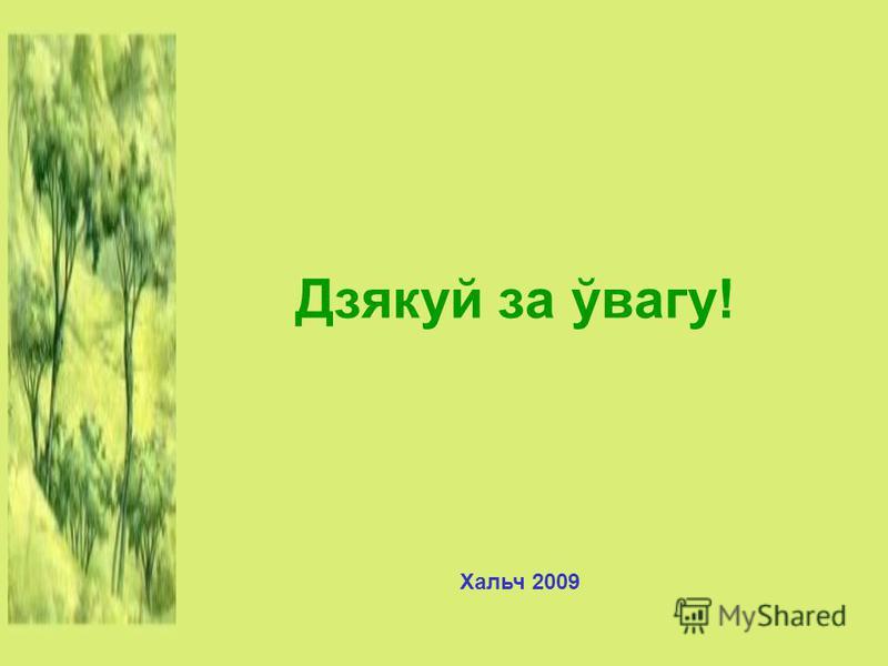 Дзякуй за ўвагу! Хальч 2009