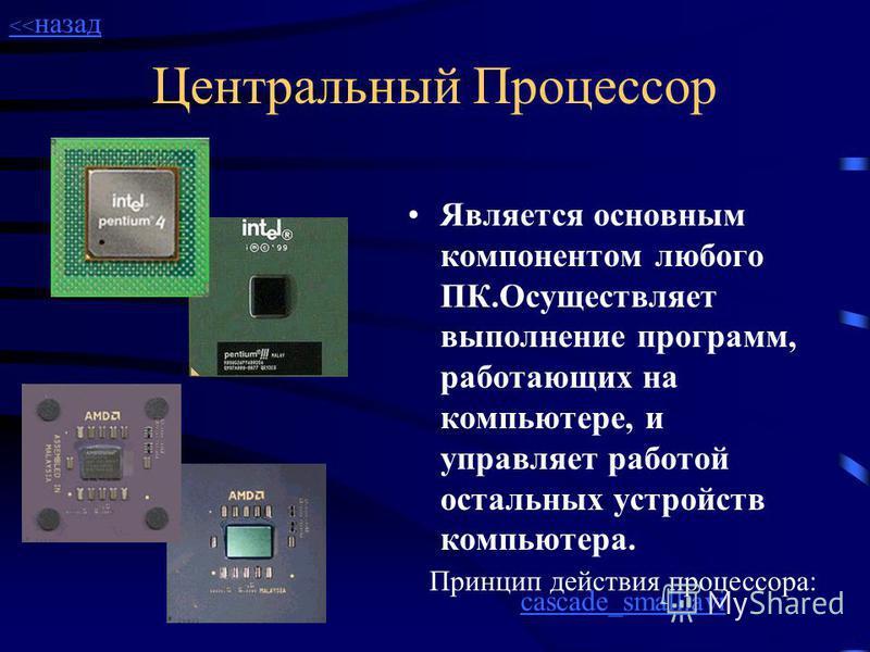 Системная плата Наиболее важные элементы компьютера: центральный процессор, модули памяти и множество других микросхем, без которых он не мог бы работать, - размещаются на материнской плате. Это основная плата компьютера, обычно самая большая по разм