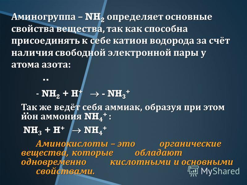 Аминогруппа – NH 2 определяет основные свойства вещества, так как способна присоединять к себе катион водорода за счёт наличия свободной электронной пары у атома азота : - NH 2 + H + - NH 3 + Так же ведёт себя аммиак, образуя при этом ион аммония NH