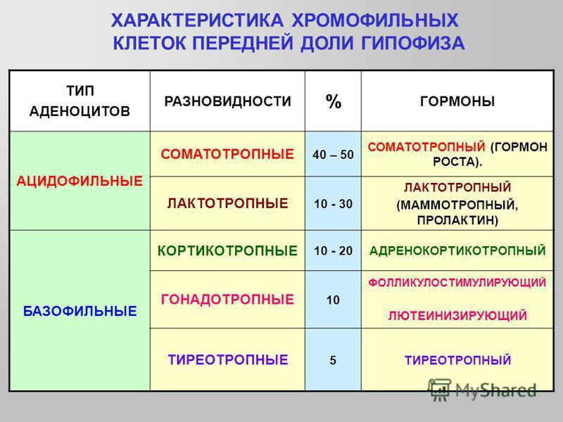 ТИП АДЕНОЦИТОВ РАЗНОВИДНОСТИ % ГОРМОНЫ АЦИДОФИЛЬНЫЕ СОМАТОТРОПНЫЕ 40 – 50 СОМАТОТРОПНЫЙ (ГОРМОН РОСТА). ЛАКТОТРОПНЫЕ 10 - 30 ЛАКТОТРОПНЫЙ (МАММОТРОПНЫЙ, ПРОЛАКТИН) БАЗОФИЛЬНЫЕ КОРТИКОТРОПНЫЕ 10 - 20АДРЕНОКОРТИКОТРОПНЫЙ ГОНАДОТРОПНЫЕ 10 ФОЛЛИКУЛОСТИМУ
