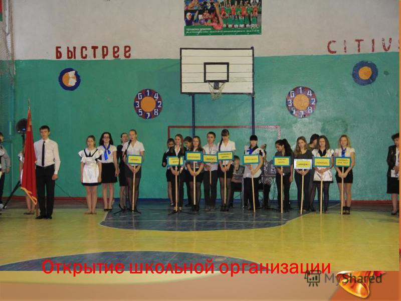 Открытие школьной организации