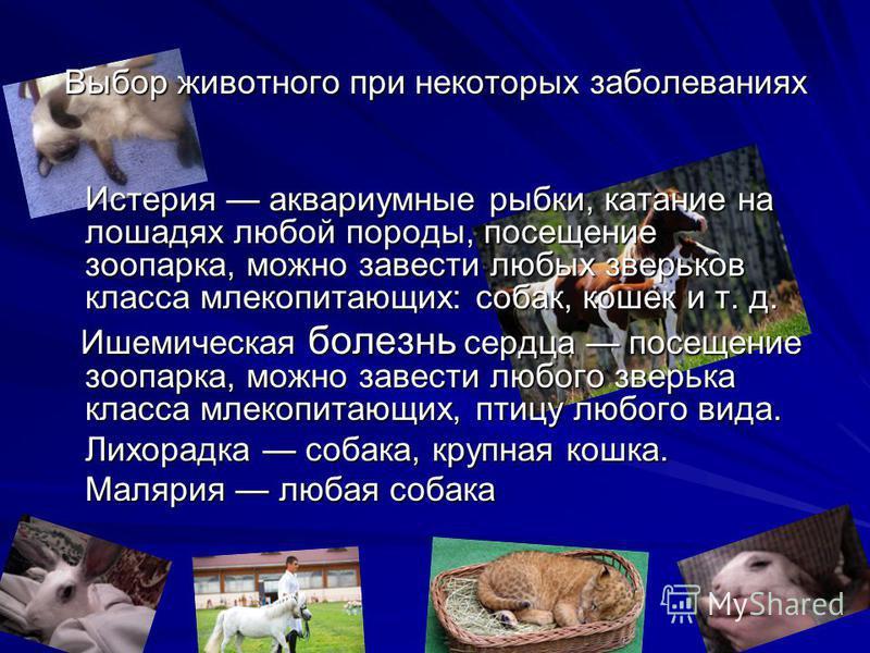 Выбор животного при некоторых заболеваниях Истерия аквариумные рыбки, катание на лошадях любой породы, посещение зоопарка, можно завести любых зверьков класса млекопитающих: собак, кошек и т. д. Ишемическая болезнь сердца посещение зоопарка, можно за