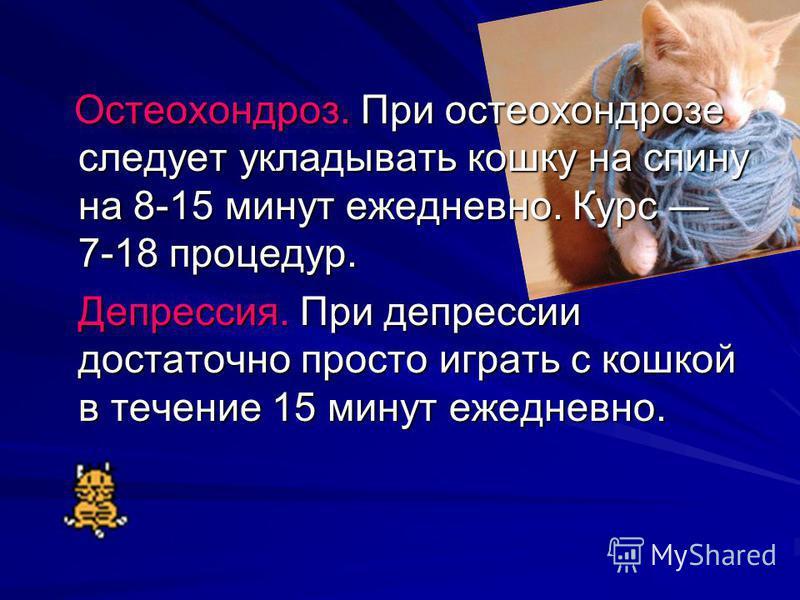 Остеохондроз. При остеохондрозе следует укладывать кошку на спину на 8-15 минут ежедневно. Курс 7-18 процедур. Остеохондроз. При остеохондрозе следует укладывать кошку на спину на 8-15 минут ежедневно. Курс 7-18 процедур. Депрессия. При депрессии дос