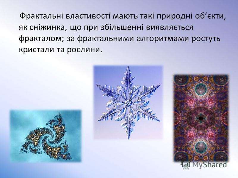 Фрактальні властивості мають такі природні обєкти, як сніжинка, що при збільшенні виявляється фракталом; за фрактальними алгоритмами ростуть кристали та рослини.