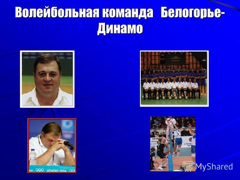 Волейбольная команда Белогорье- Динамо