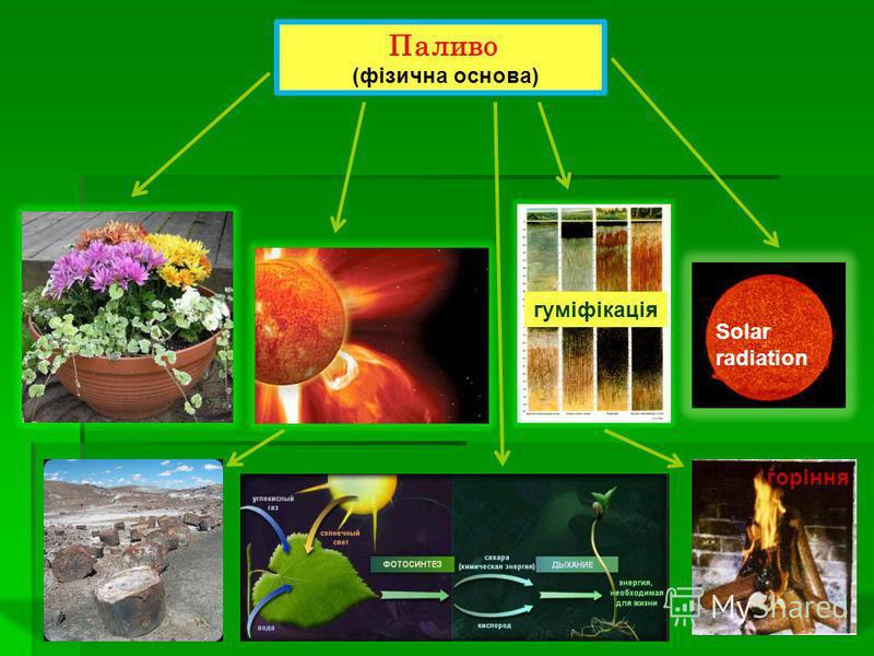 Паливо (фізична основа) Solar radiation гуміфікація горіння