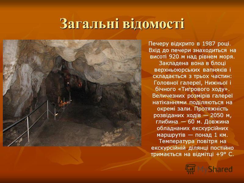 Печеру відкрито в 1987 році. Вхід до печери знаходиться на висоті 920 м над рівнем моря. Закладена вона в блоці верхньоюрських вапняків і складається з трьох частин: Головної галереї, Нижньої і бічного «Тигрового ходу». Величезних розмірів галереї на