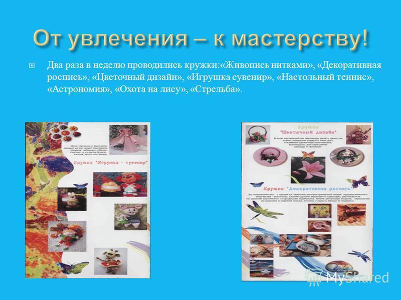Два раза в неделю проводились кружки :« Живопись нитками », « Декоративная роспись », « Цветочный дизайн », « Игрушка сувенир », « Настольный теннис », « Астрономия », « Охота на лису », « Стрельба ».