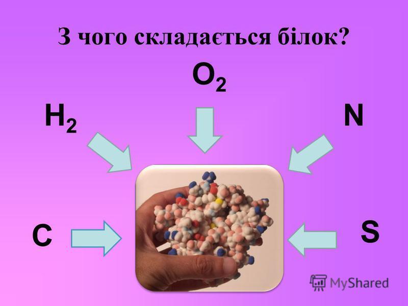 З чого складається білок? C H2 H2 O2O2 N S