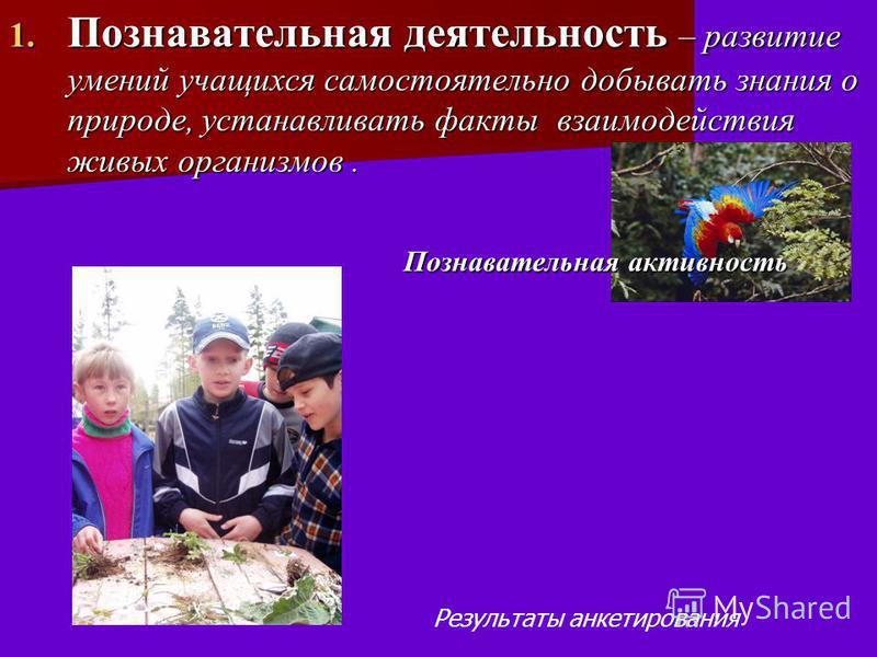 1. Познавательная деятельность – развитие умений учащихся самостоятельно добывать знания о природе, устанавливать факты взаимодействия живых организмов. Познавательная активность Познавательная активность Результаты анкетирования