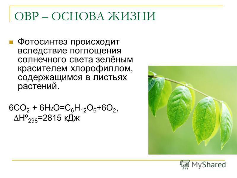 ОВР – ОСНОВА ЖИЗНИ Фотосинтез происходит вследствие поглощения солнечного света зелёным красителем хлорофиллом, содержащимся в листьях растений. 6CO 2 + 6H 2 O=С 6 Н 12 О 6 +6О 2, Нº 298 =2815 к Дж