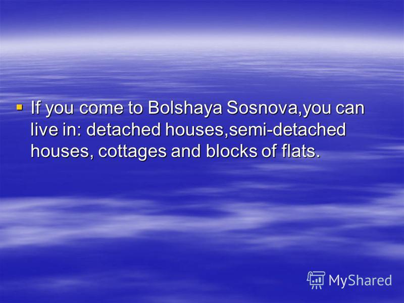 Bolshaya Sosnova With Its Houses