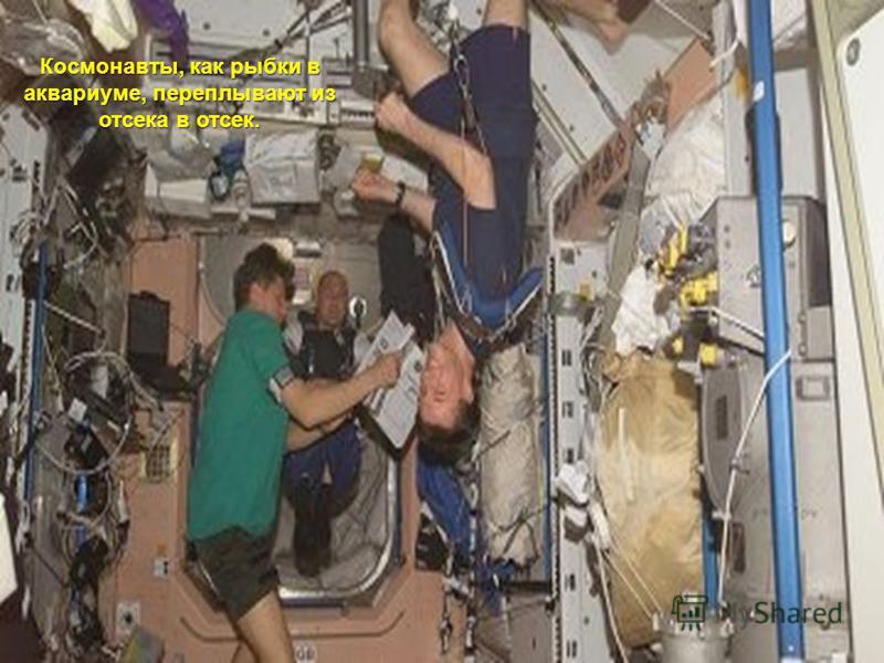 Космонавты, как рыбки в аквариуме, переплывают из отсека в отсек.