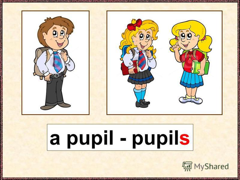 a pupil - pupils