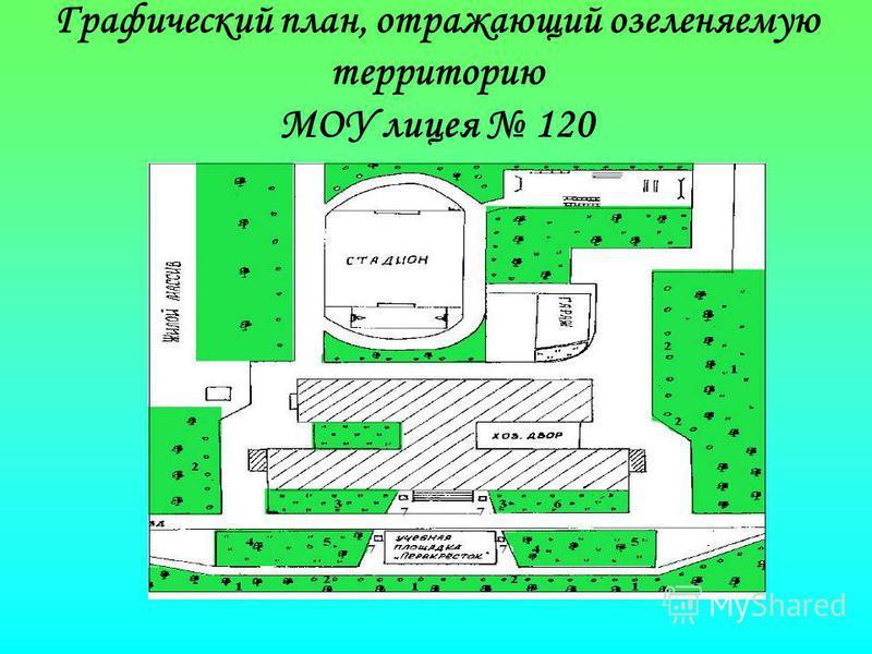 Графический план, отражающий озеленяемую территорию МОУ лицея 120