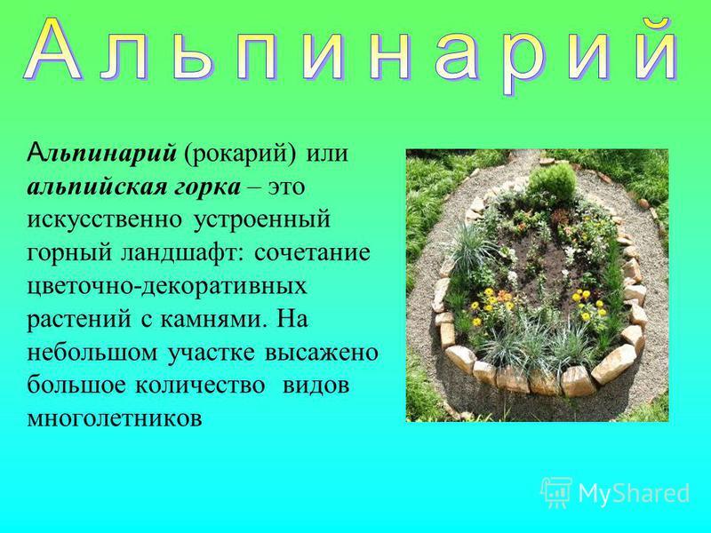 А льпинарий (рокарий) или альпийская горка – это искусственно устроенный горный ландшафт: сочетание цветочно-декоративных растений с камнями. На небольшом участке высажено большое количество видов многолетников