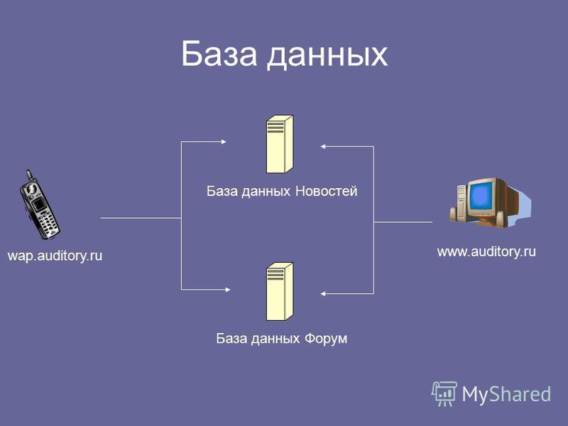 База данных wap.auditory.ru www.auditory.ru База данных Новостей База данных Форум