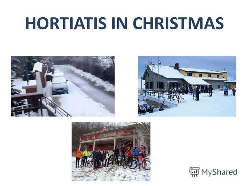 HORTIATIS IN CHRISTMAS