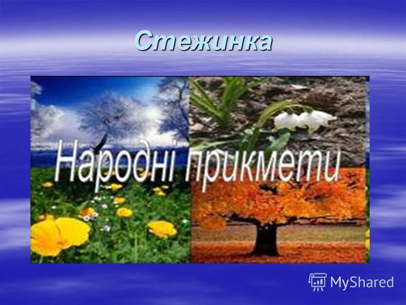 Стежинка