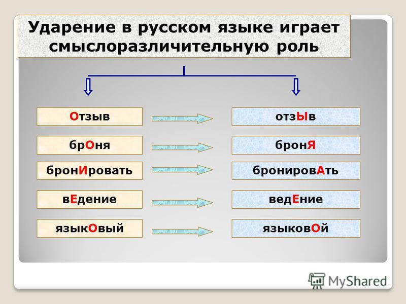 Ударение в русском языке играет смыслоразличительную роль Отзывотз Ыв бр ОняброньЯ бронь Ироватьброньиров Ать в ЕдениеведЕние язык ОвыйязыковОй