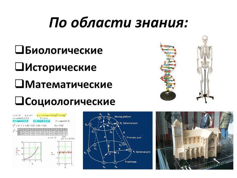 По области знания: Биологические Исторические Математические Социологические