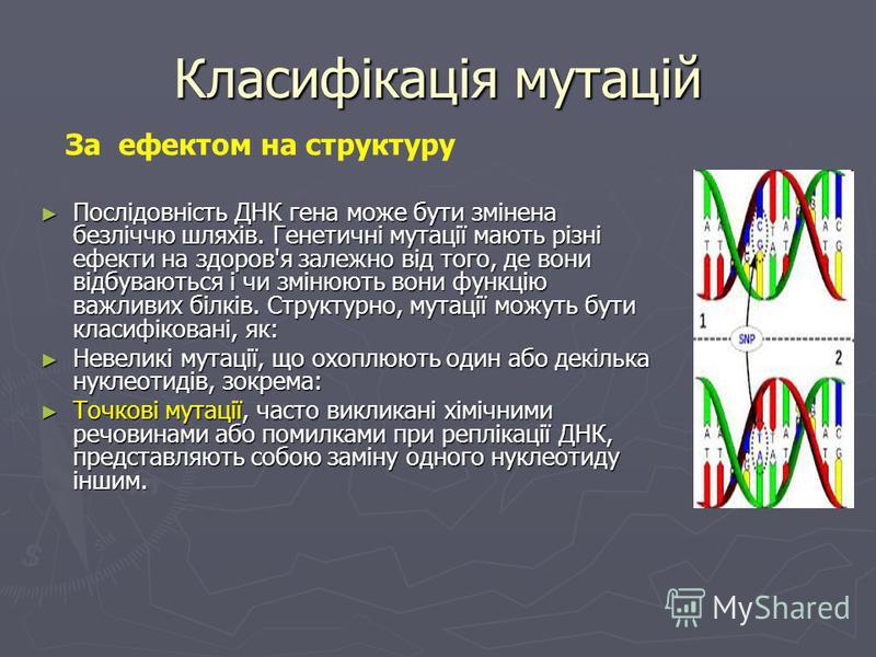 Класифікація мутацій Класифікація мутацій за впливом на життєдіяльність : корисні корисні нейтральні нейтральні летальні летальні напівлетальні напівлетальні умовно летальні умовно летальні