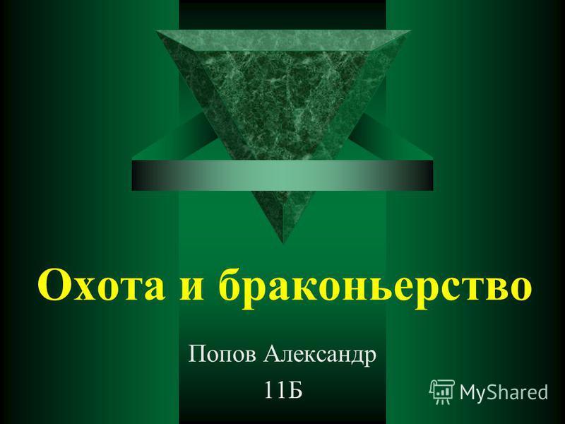 Охота и браконьерство Попов Александр 11Б