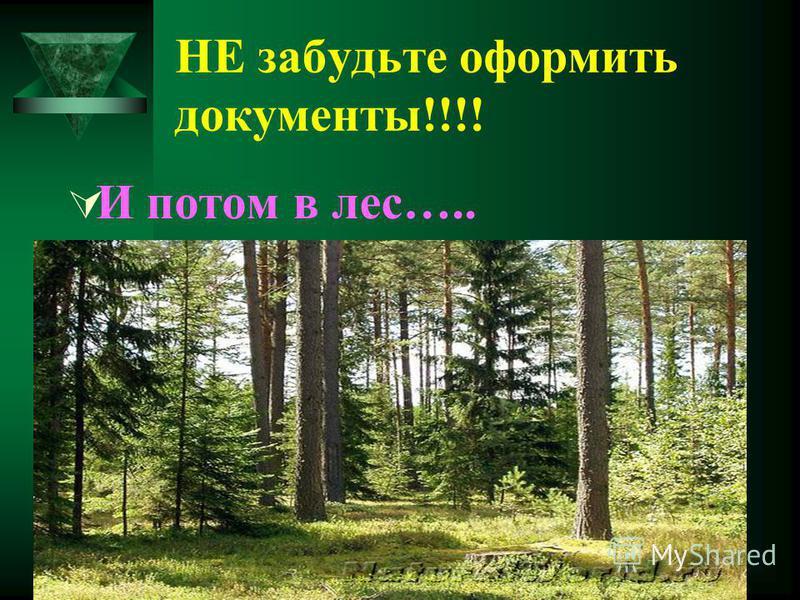 НЕ забудьте оформить документы!!!! И потом в лес…..
