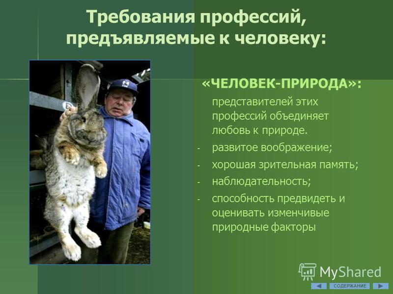 Требования профессий, предъявляемые к человеку: «ЧЕЛОВЕК-ПРИРОДА»: представителей этих профессий объединяет любовь к природе. - - развитое воображение; - - хорошая зрительная память; - - наблюдательность; - - способность предвидеть и оценивать изменч