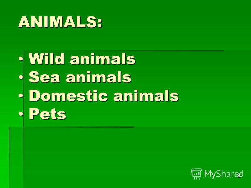 2 ANIMALS: Wild animals Wild animals Sea animals Sea animals Domestic animals Domestic animals Pets Pets