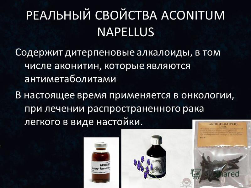 РЕАЛЬНЫЙ СВОЙСТВА ACONITUM NAPELLUS Содержит дитерпеновые алкалоиды, в том числе аконитин, которые являются антиметаболитами В настоящее время применяется в онкологии, при лечении распространенного рака легкого в виде настойки.