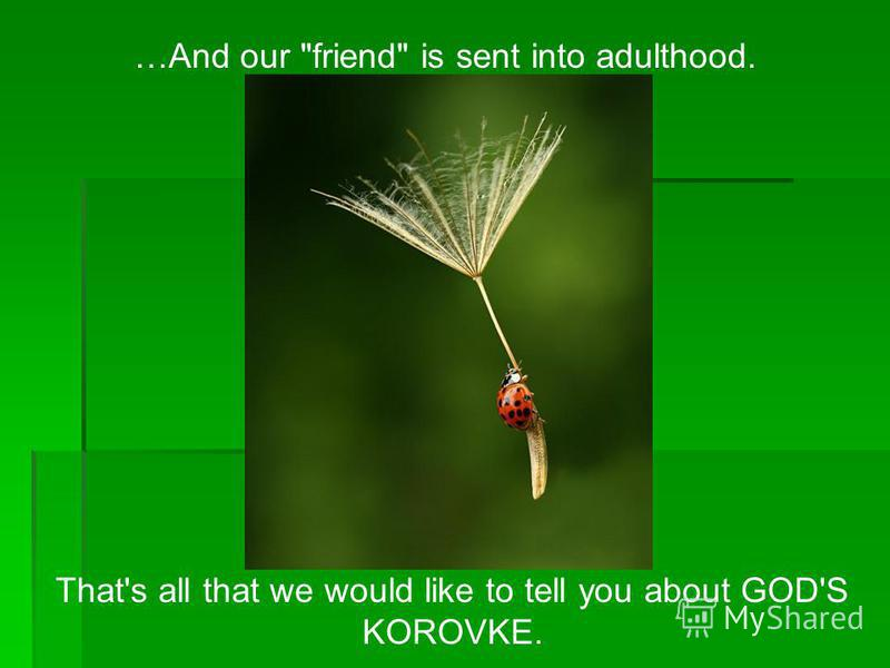 …And our friend is sent into adulthood. That's all that we would like to tell you about GOD'S KOROVKE.