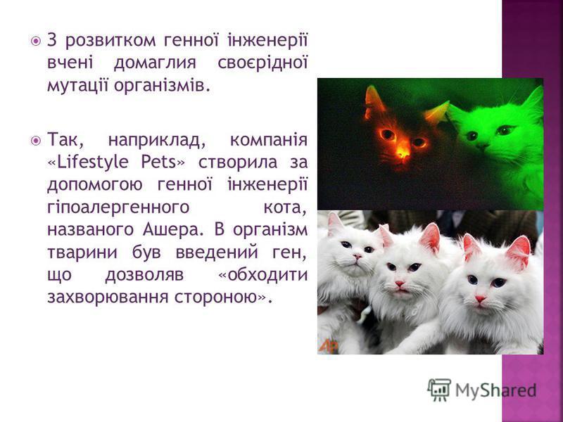 З розвитком генної інженерії вчені домаглия своєрідної мутації організмів. Так, наприклад, компанія «Lifestyle Pets» створила за допомогою генної інженерії гіпоалергенного кота, названого Ашера. В організм тварини був введений ген, що дозволяв «обход