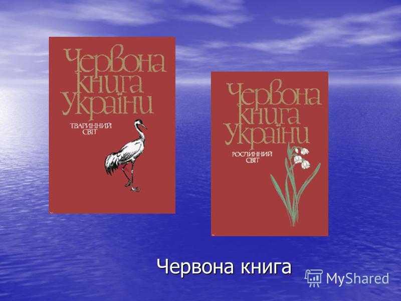 Червона книга